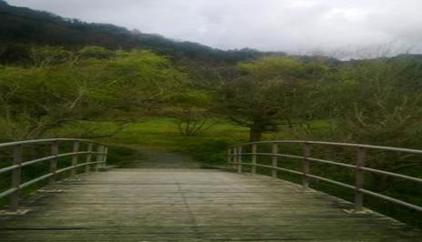Vista a la otra parte del puente