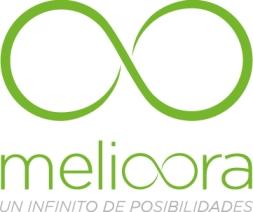 Melioora, ayuda a manages a disfrutar en su trabajo